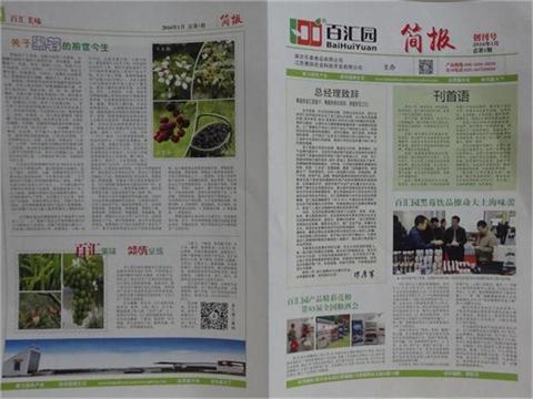 《易胜博特点简报》创刊号新年启航