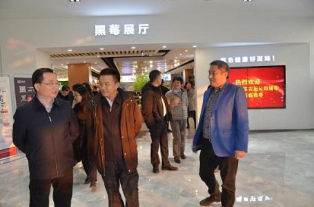 热烈欢迎财政部和国家农担公司领导一行莅临易胜博特点指导