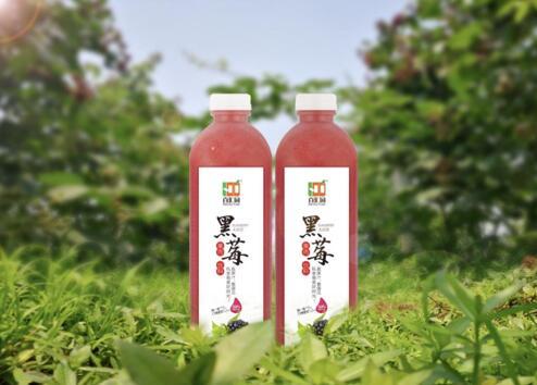 黑莓果肉饮料1L*4瓶/箱